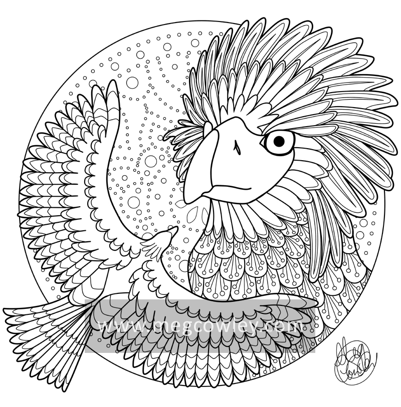 phillipine eagle coloring pages - photo#16