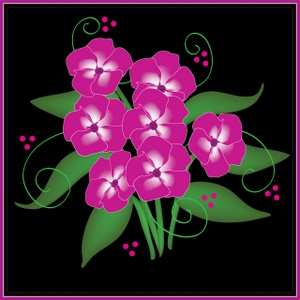 Phlox clipart #4, Download drawings