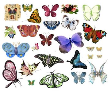 Photoshop clipart #5, Download drawings