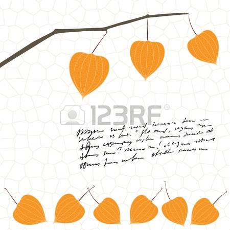 Physalis clipart #1, Download drawings