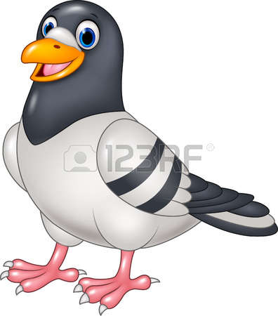 Pigeon clipart #2, Download drawings