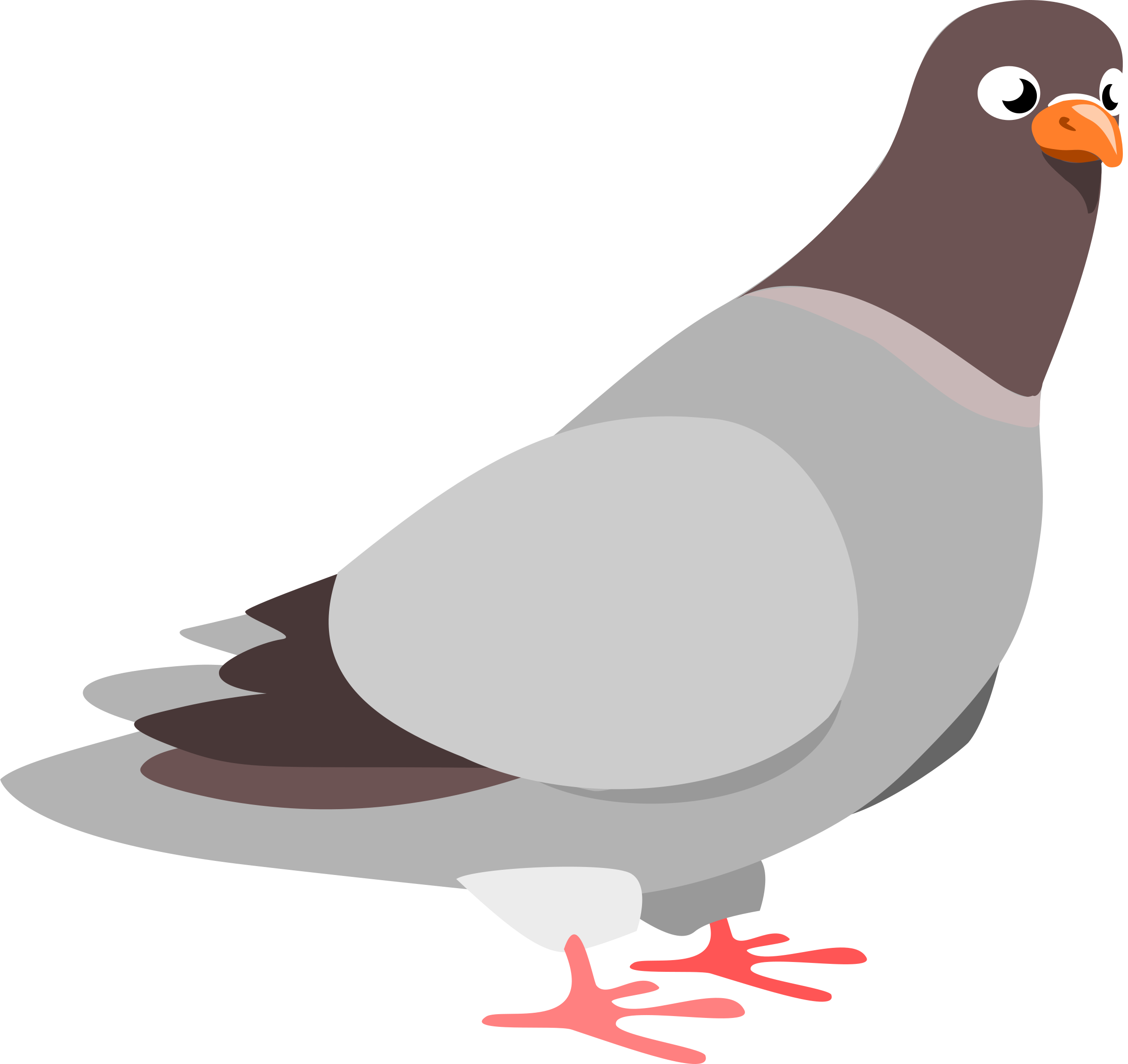 Pigeon clipart #13, Download drawings