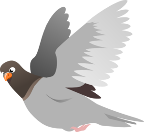 Pidgeons clipart #15, Download drawings
