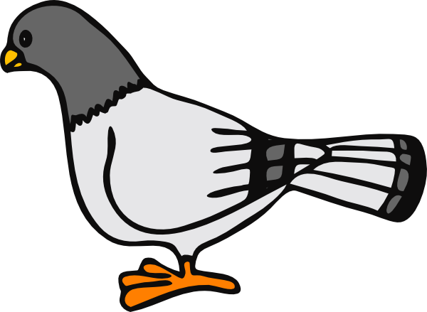 Pigeon clipart #8, Download drawings