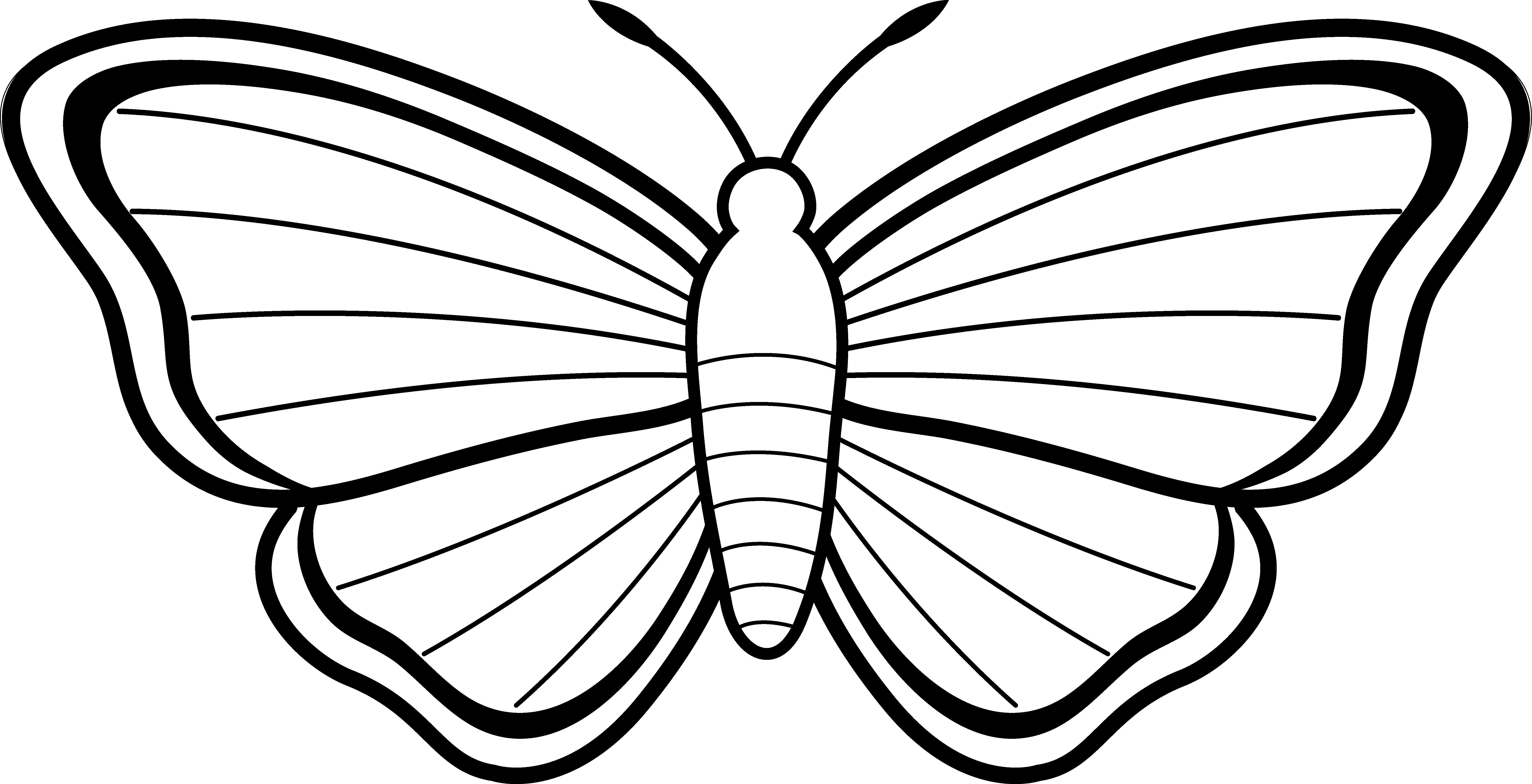 Pindi Moth clipart #17, Download drawings