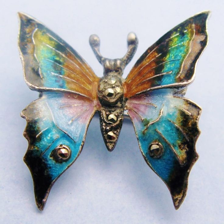 Pindi Moth clipart #16, Download drawings