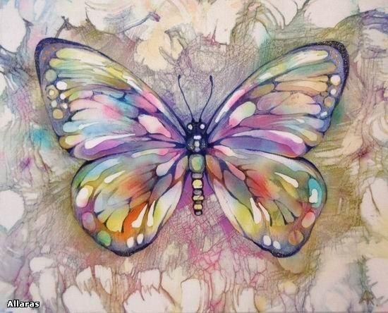 Pindi Moth clipart #19, Download drawings