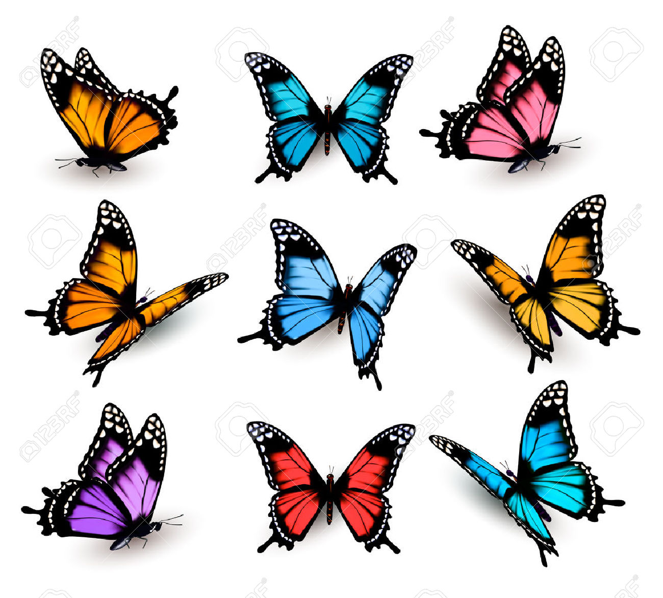 Pindi Moth clipart #5, Download drawings