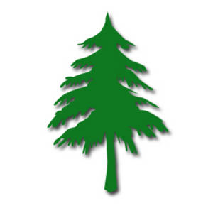 Pine clipart #12, Download drawings
