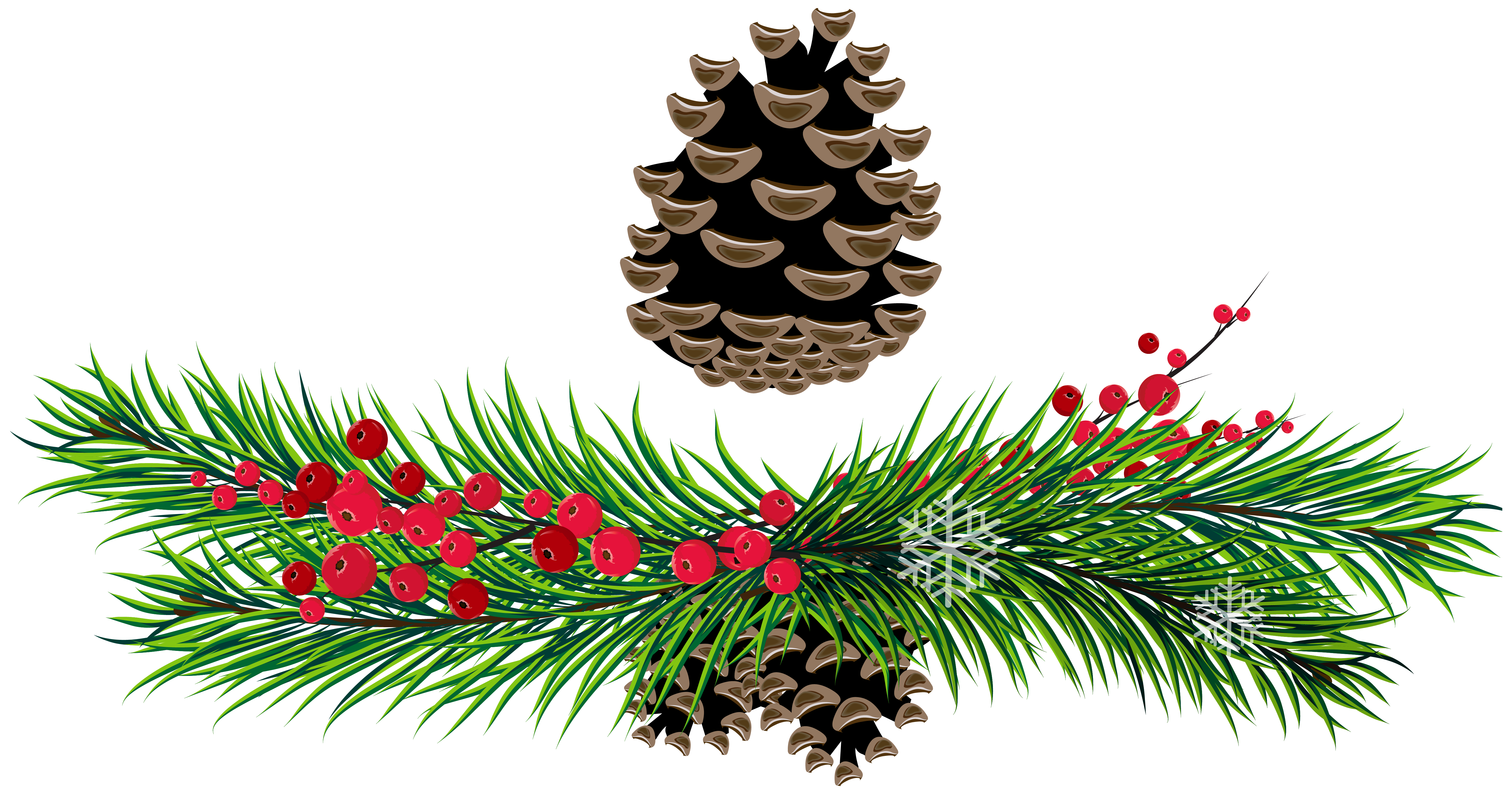 Pine clipart #5, Download drawings