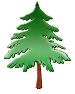 Pine Tree clipart #19, Download drawings