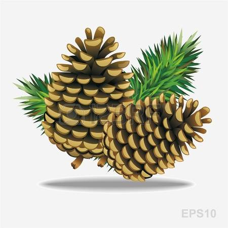 Pine Cone clipart #8, Download drawings