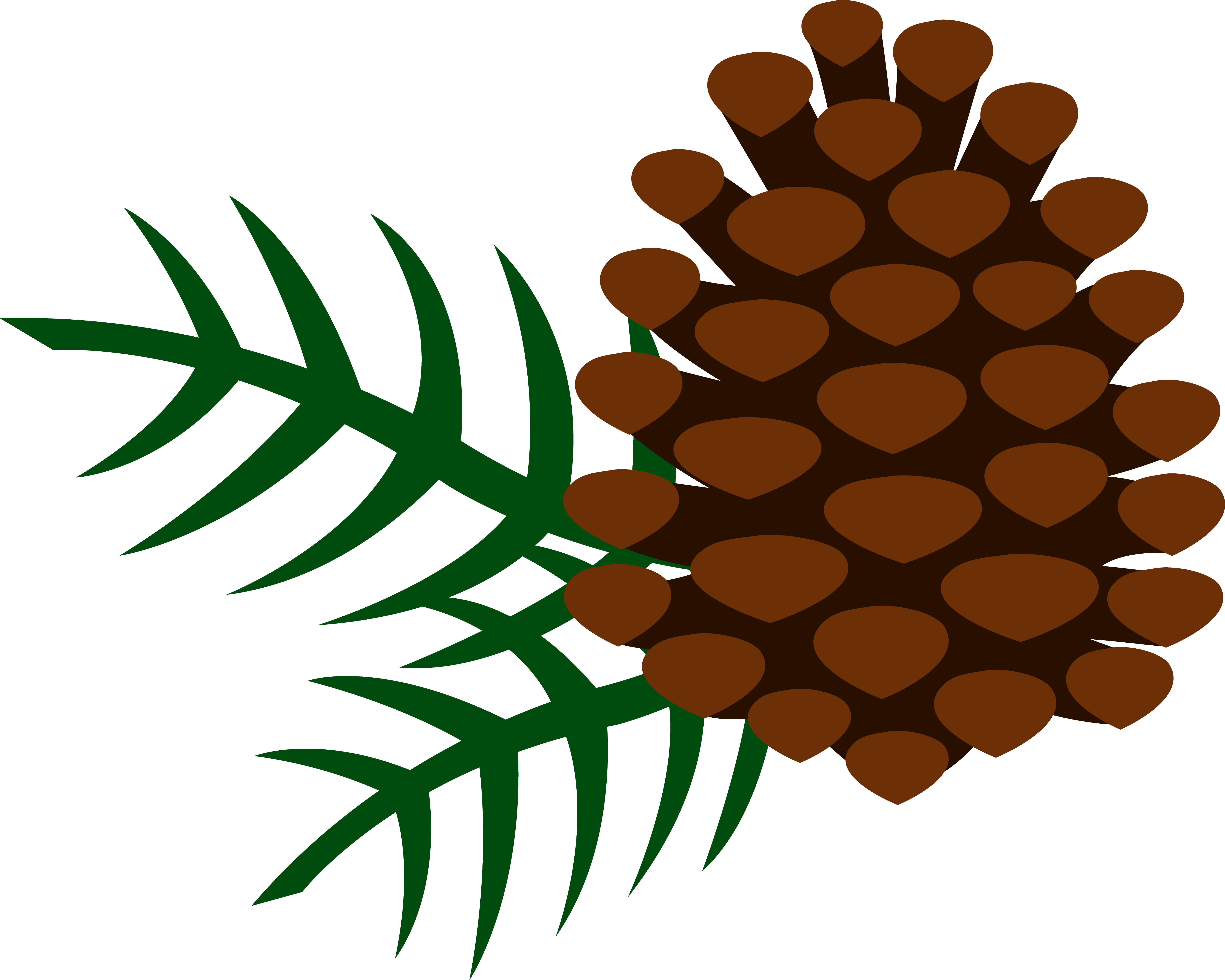 Pine Cone clipart #2, Download drawings