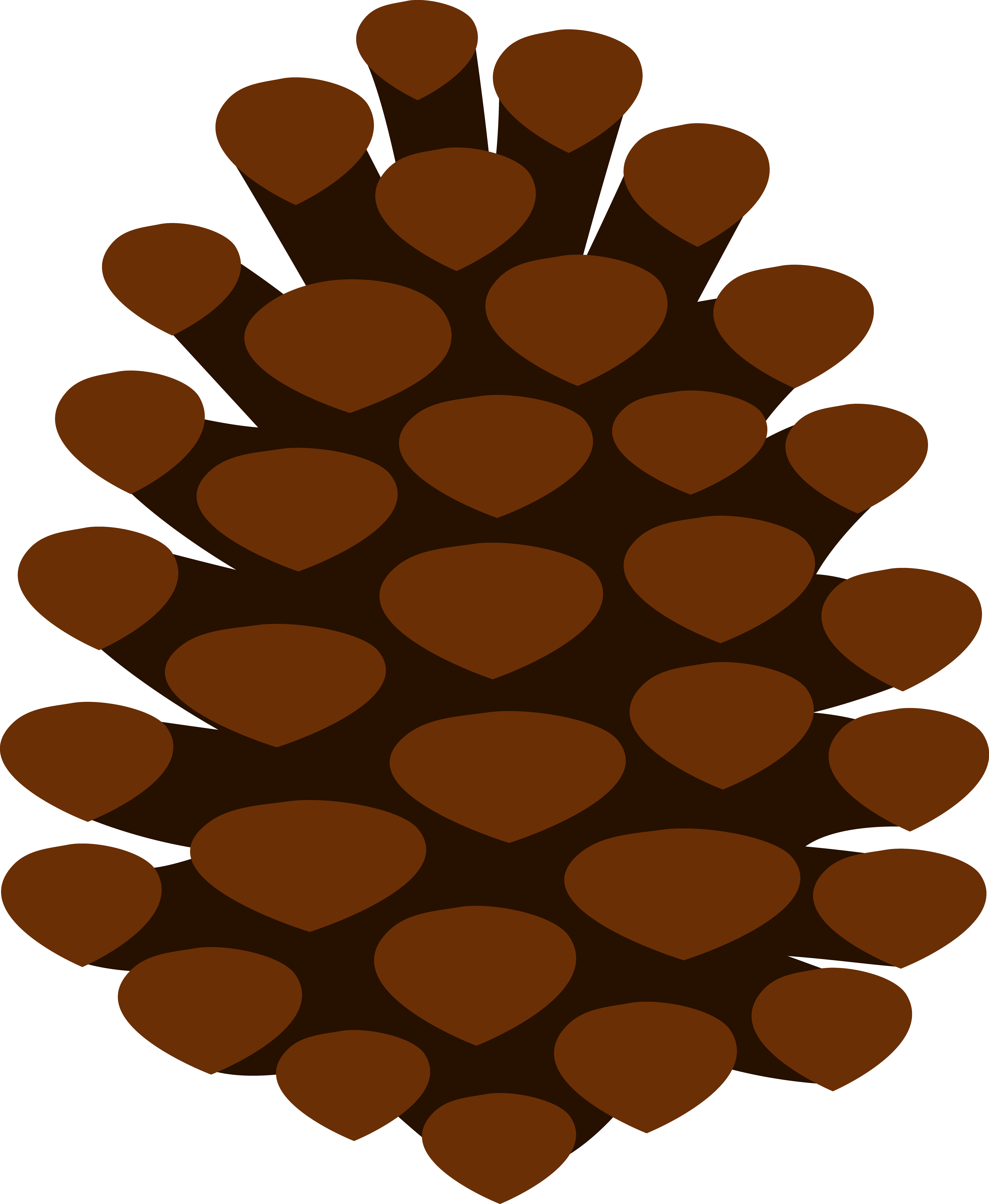 Pine Cone clipart #4, Download drawings