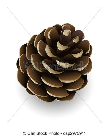 Pine Cone clipart #18, Download drawings