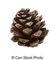 Pine Cone clipart #19, Download drawings