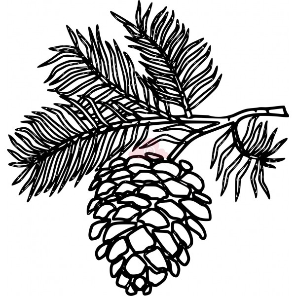 Pine Cone clipart #11, Download drawings