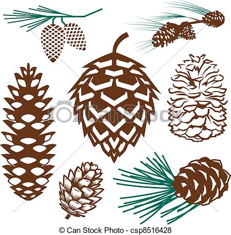 Pine Cone clipart #15, Download drawings