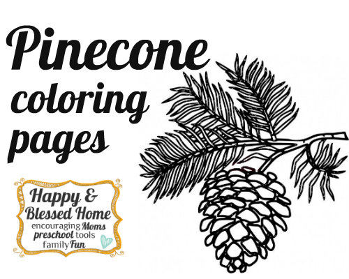 Pine Cone coloring #15, Download drawings