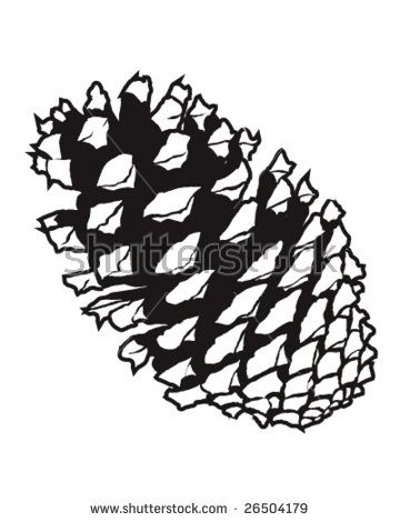 Pine Cone coloring #4, Download drawings