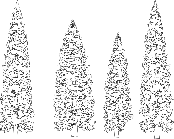 Pine svg #4, Download drawings
