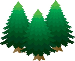 Pine Tree clipart #14, Download drawings