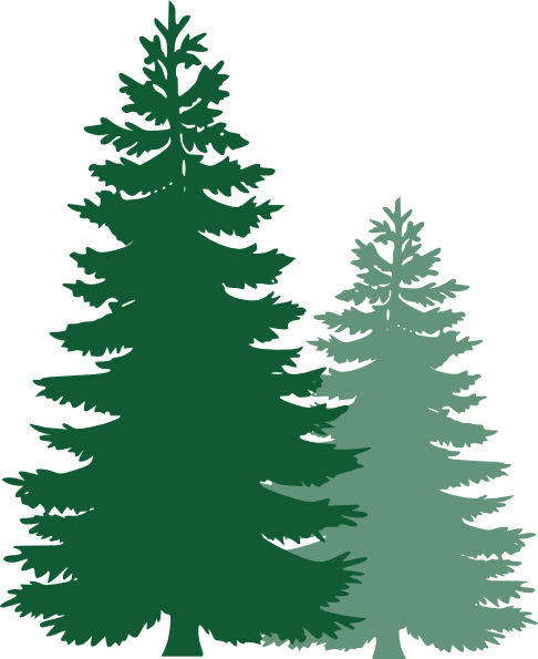 Pine Tree clipart #1, Download drawings