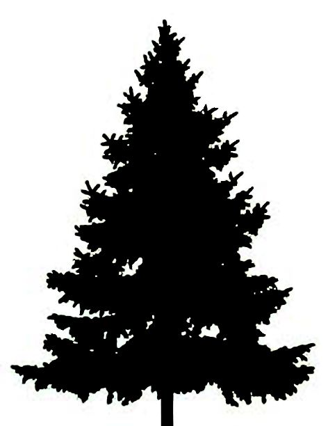 Pine Tree clipart #3, Download drawings