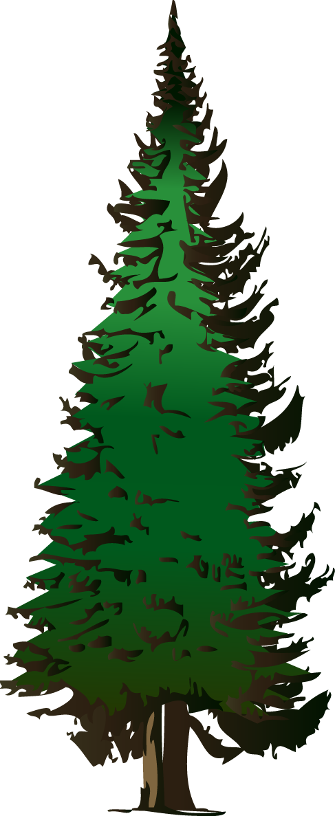 Pine Tree clipart #10, Download drawings