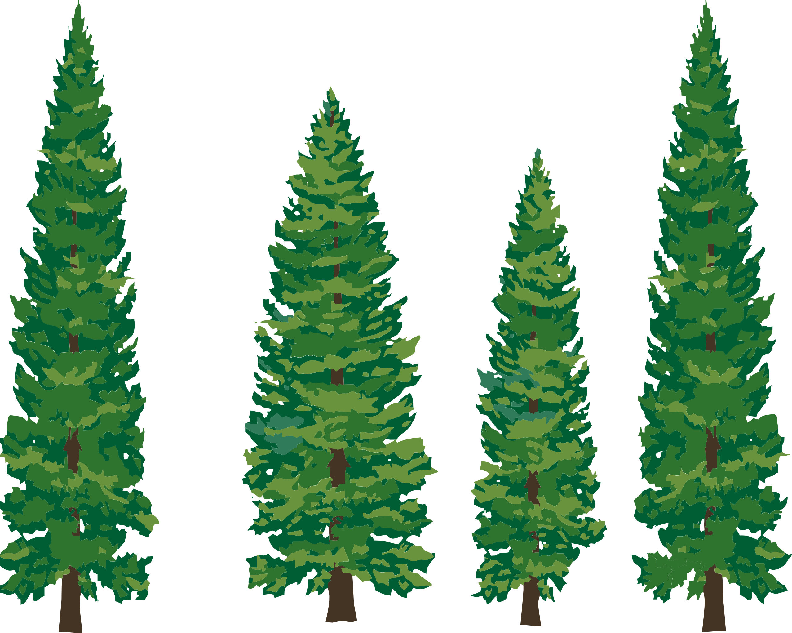 Pine Tree clipart #6, Download drawings