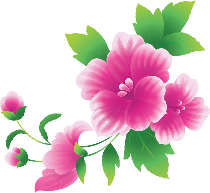 Pink Flower clipart #1, Download drawings