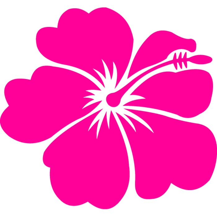 Pink Flower clipart #8, Download drawings
