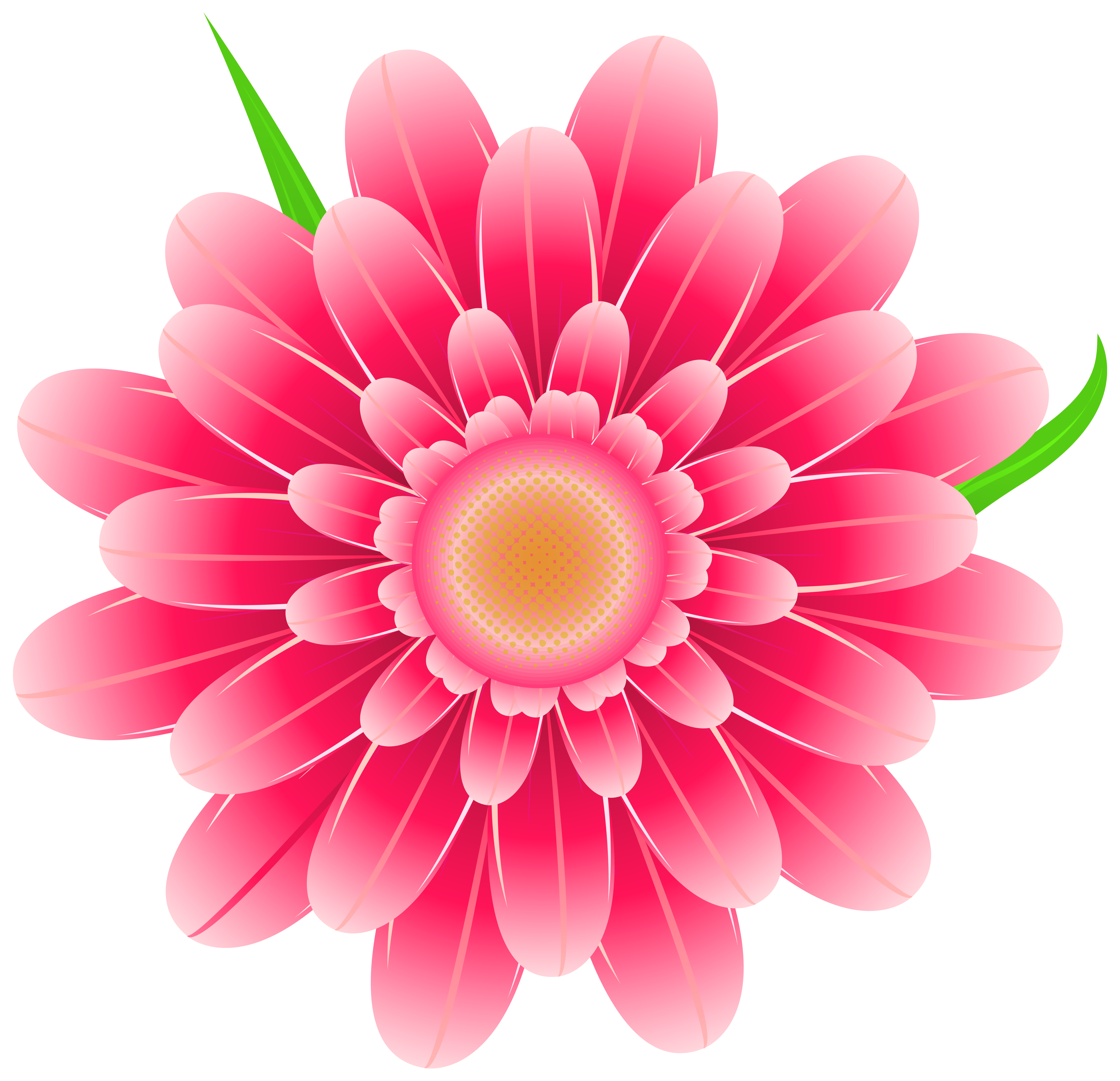 Pink Flower clipart #5, Download drawings