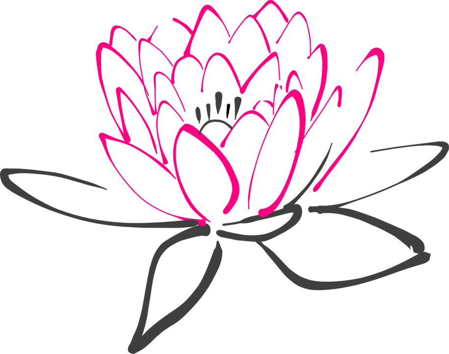 Pink Lily svg #9, Download drawings