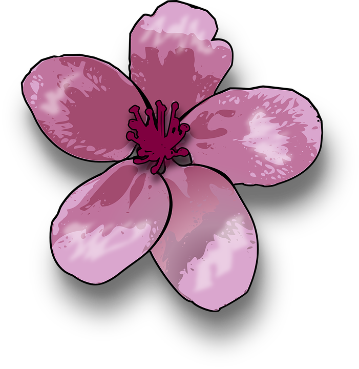 Pink Lily svg #8, Download drawings
