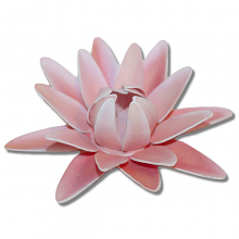 Pink Lily svg #12, Download drawings