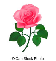 Pink Rose clipart #15, Download drawings