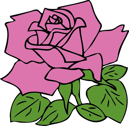 Pink Rose clipart #8, Download drawings