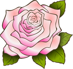 Pink Rose clipart #16, Download drawings