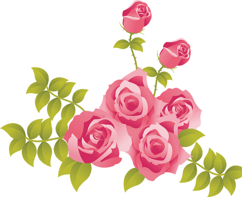 Pink Rose clipart #20, Download drawings