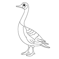 Pink-footed Goose coloring #17, Download drawings