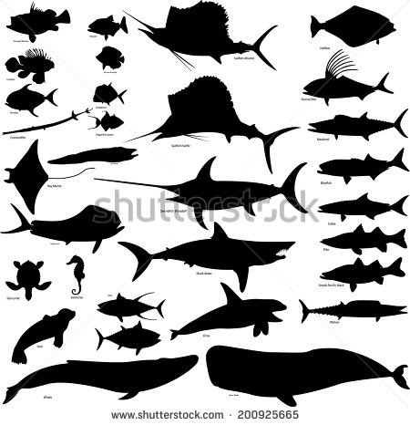Sailfish svg #10, Download drawings