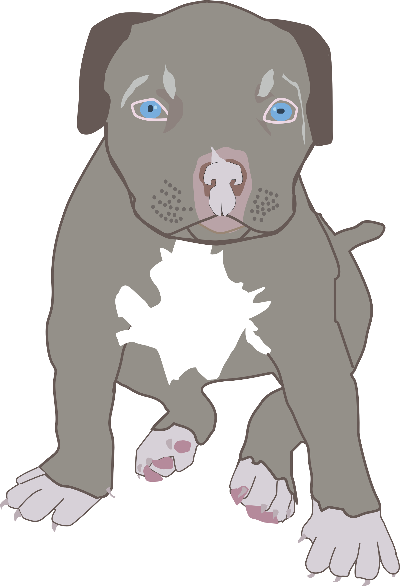 Pitbull Puppy svg #18, Download drawings