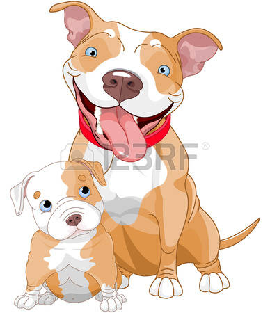 Pitbull clipart #1, Download drawings
