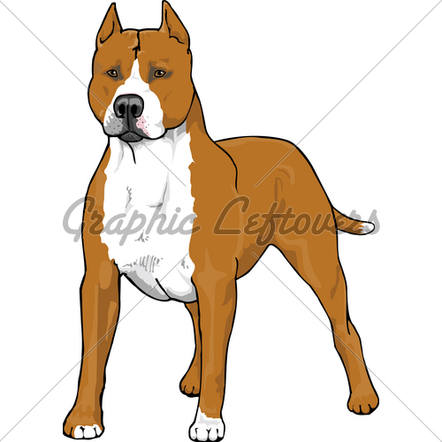 Pitbull clipart #19, Download drawings