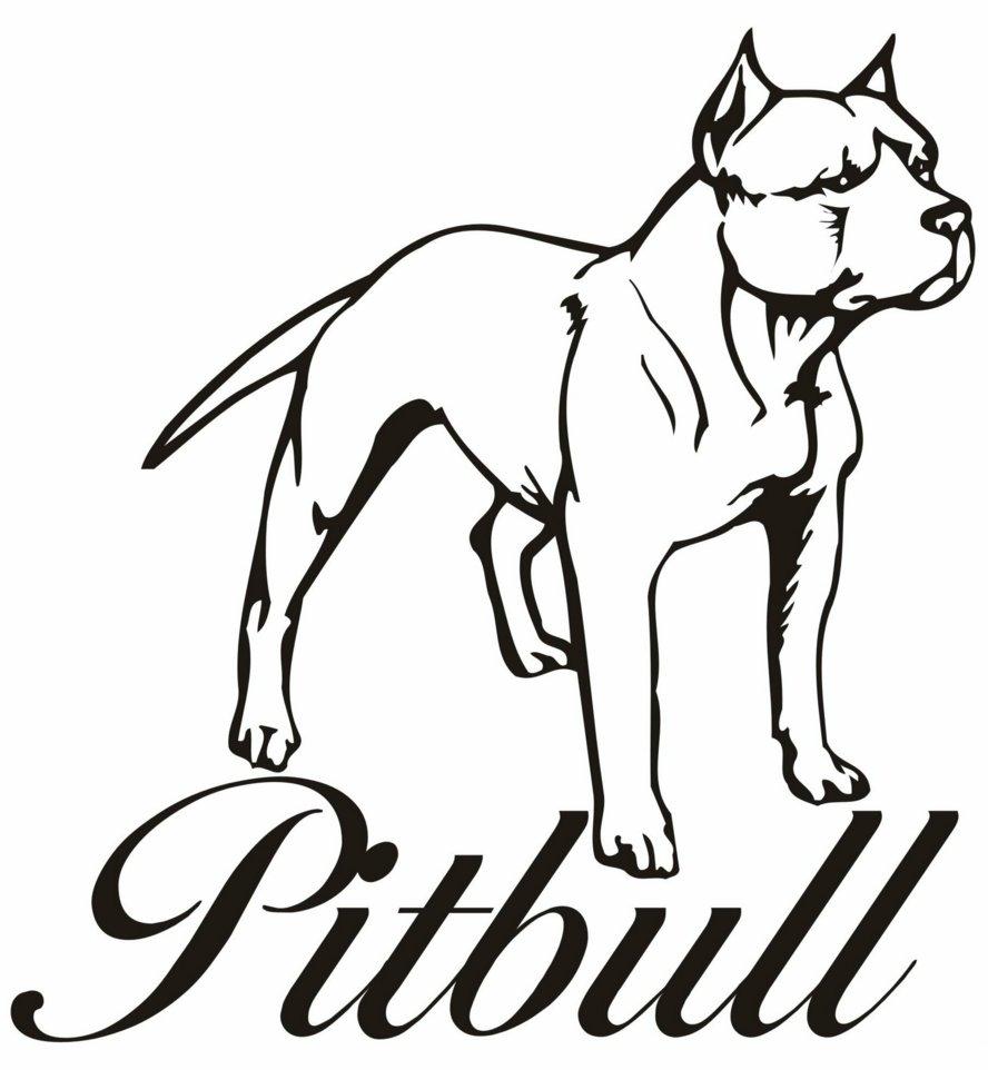Pitbull coloring #13, Download drawings