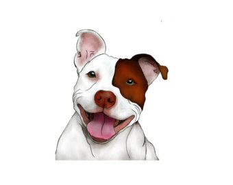 Pitbull clipart #7, Download drawings