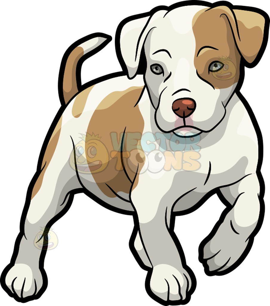 Pitbull Puppy clipart #15, Download drawings