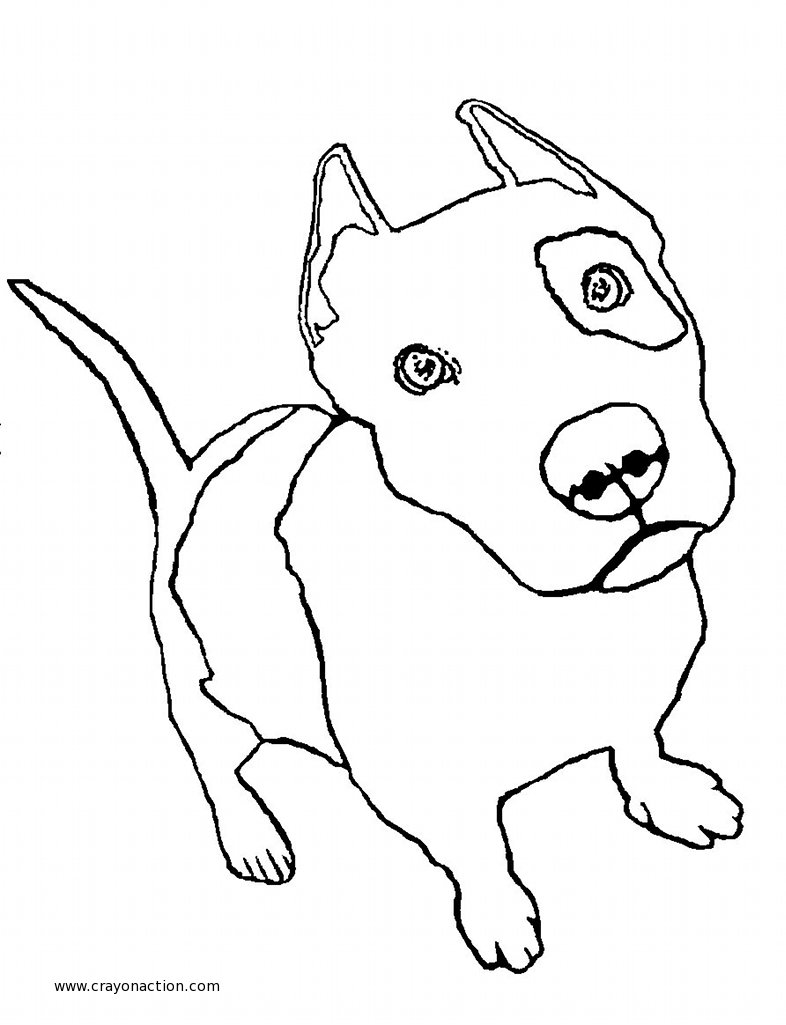 Pitbull coloring #19, Download drawings