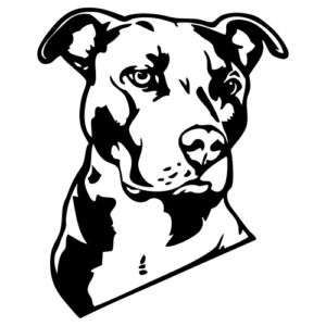 Pitbull svg #14, Download drawings